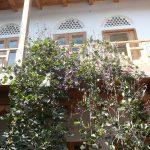 Гостиница Элен Оазис Бухара двор 2