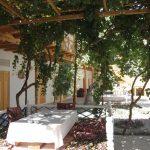 Гостиница Ховли Поён Бухара двор 9